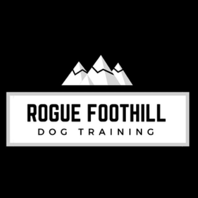 Rogue Foothill Dog Training