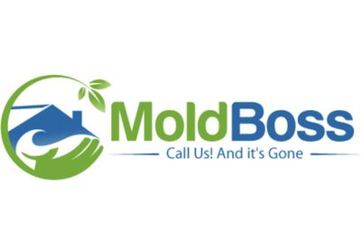 Avatar for Mold Boss