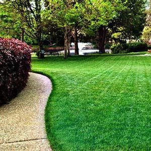 Avatar for Lawn care and Irrigation East Falmouth, MA Thumbtack