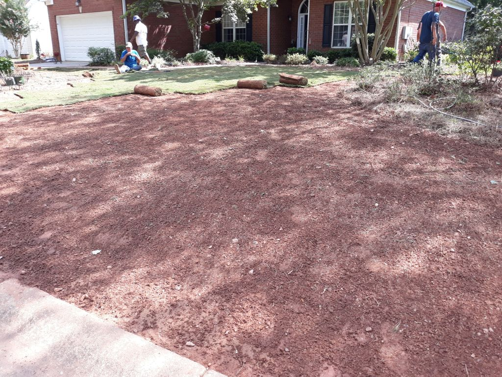 Complete New Sod Lawn
