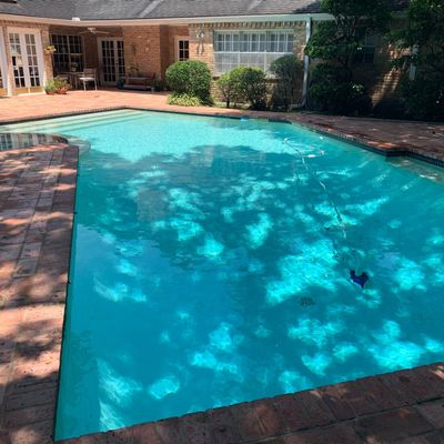 Avatar for Affordable Pool Services Houston, TX Thumbtack