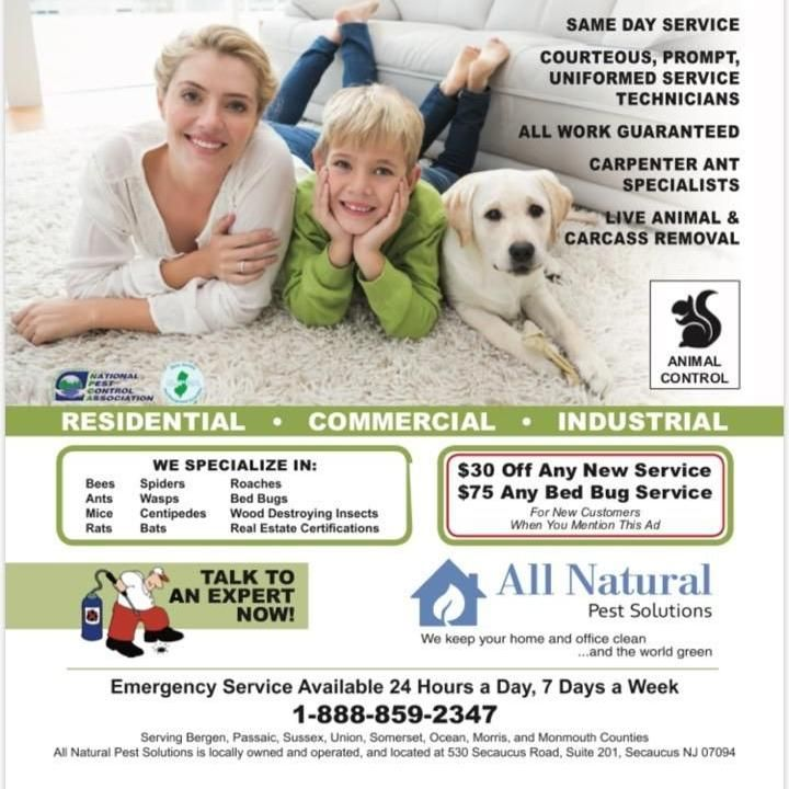 All Natural Pest Control Solutions