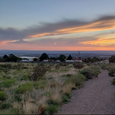 Avatar for Peerless Real Estate Management, LLC Albuquerque, NM Thumbtack
