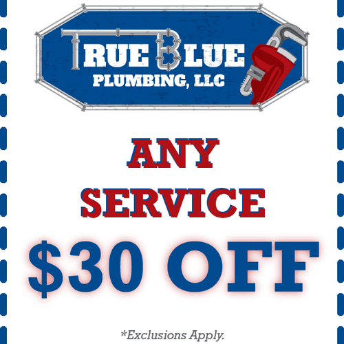 Exclusions Apply. Limit One Promotion Per Service Call.