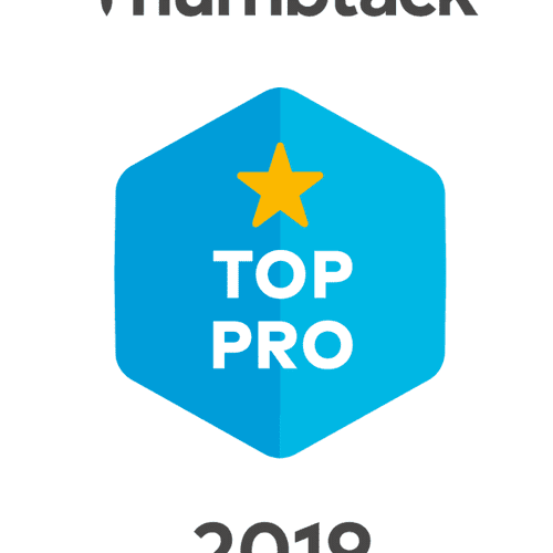 TOP PROFESSIONAL 2019