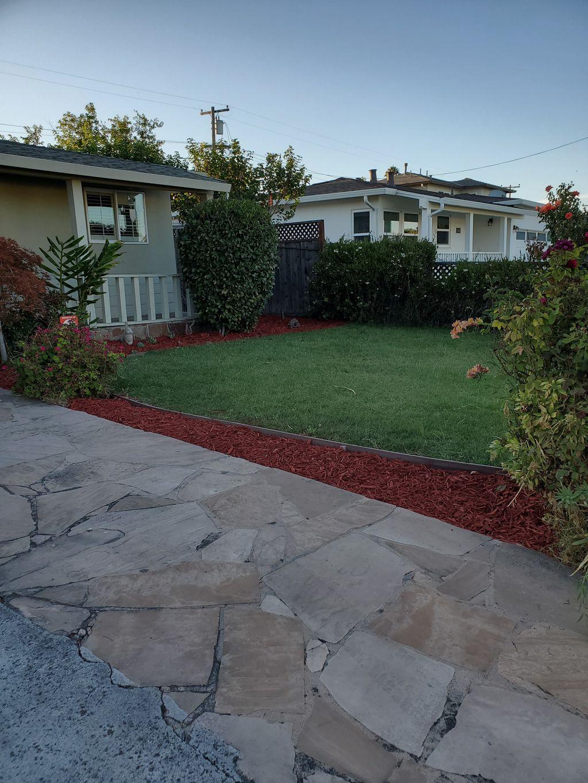Tree removal, tree planting, mulch installation