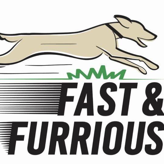 Fast & Furrious Canine Cardio Club