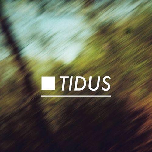 Tidus - Dazed (recorded, mixed, mastered)