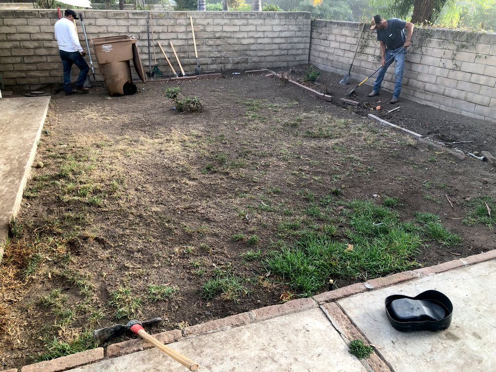 Sod and Irrigation