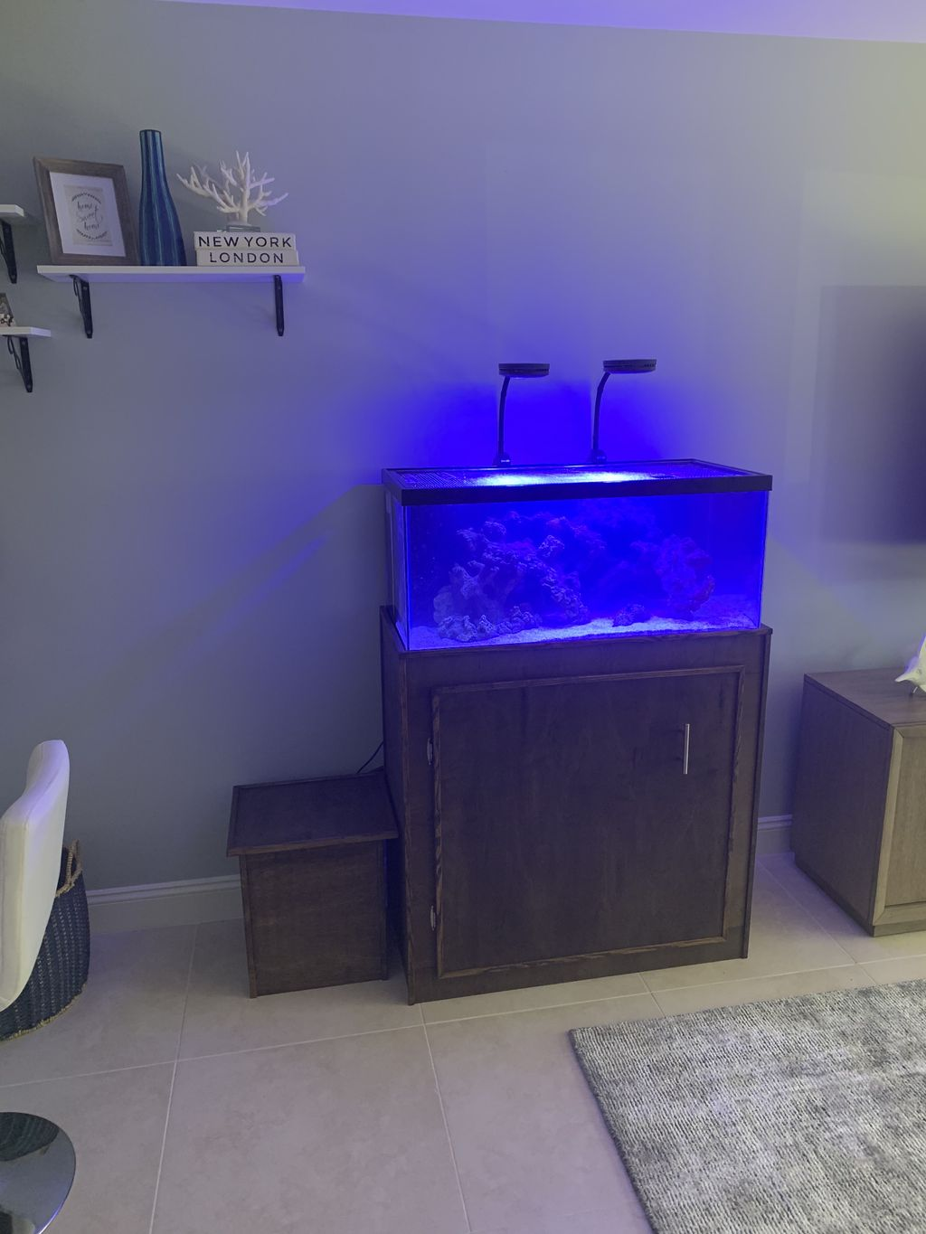 Reef tank build and install