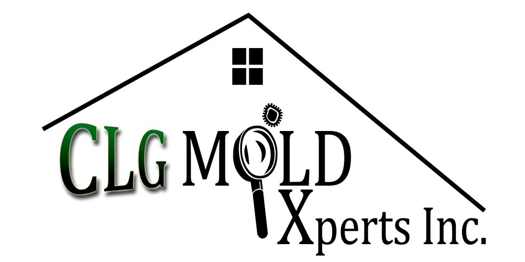 CLG Mold Xperts Inc and Repair Services