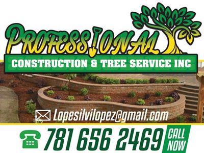 Avatar for Professional Landscaping & Tree Service Inc. Lynn, MA Thumbtack