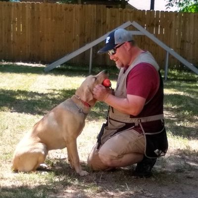 Avatar for The Carolinas' Dog Trainer (Caughman's Canines)