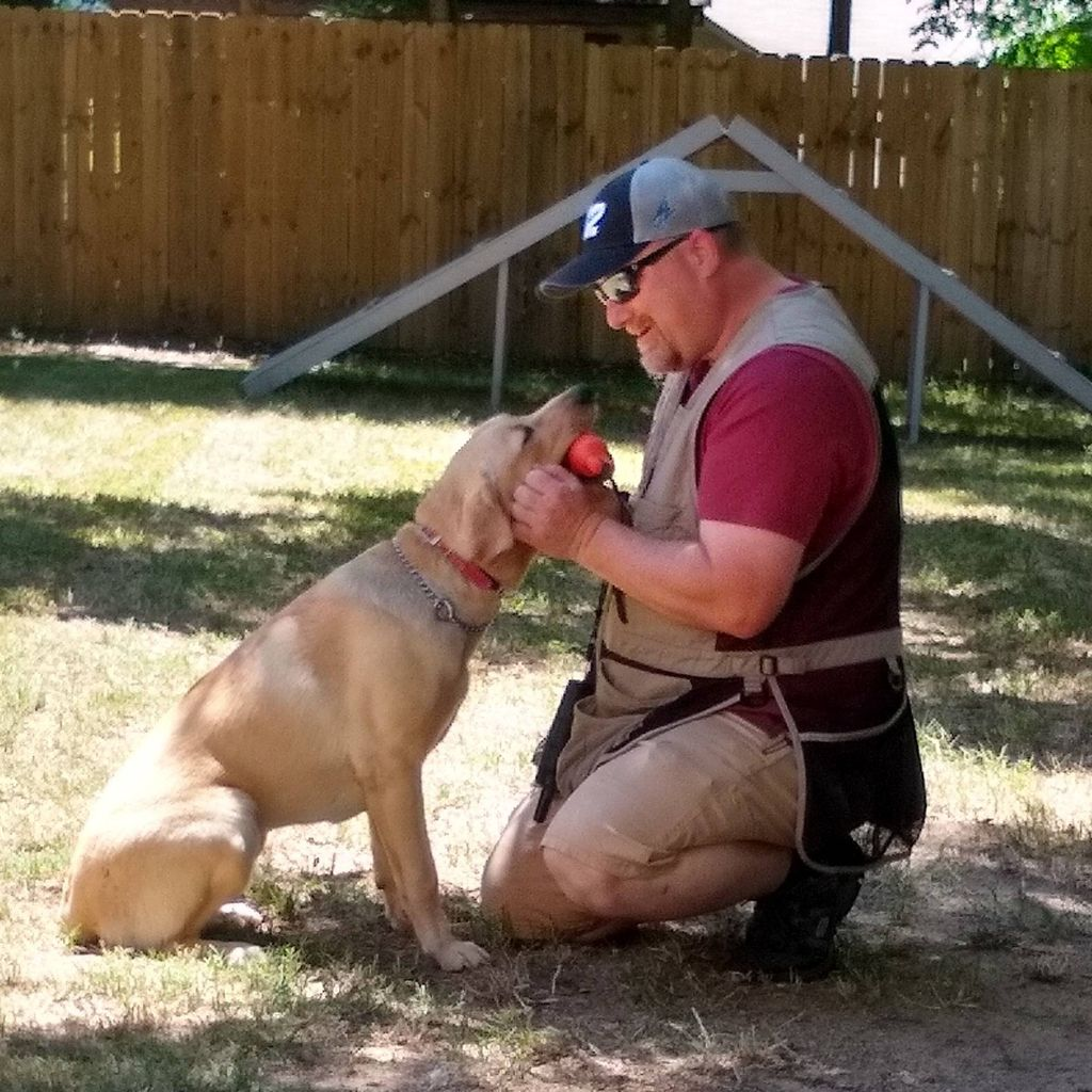 The Carolinas' Dog Trainer (Caughman's Canines)