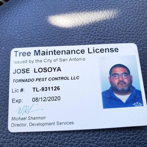 Tree Maintenance License