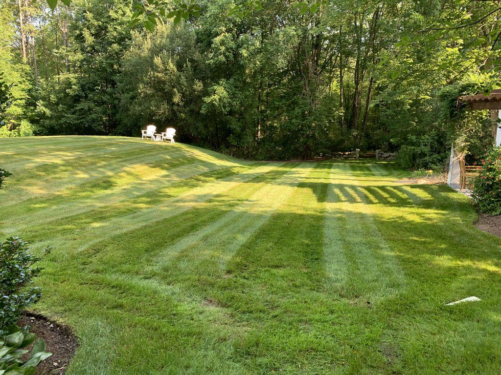 Routine Lawn Maintenance