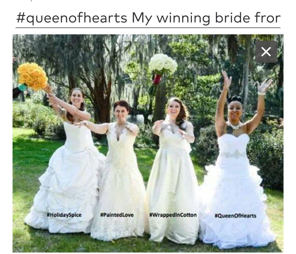 2014 TLC's Four Weddings winner
