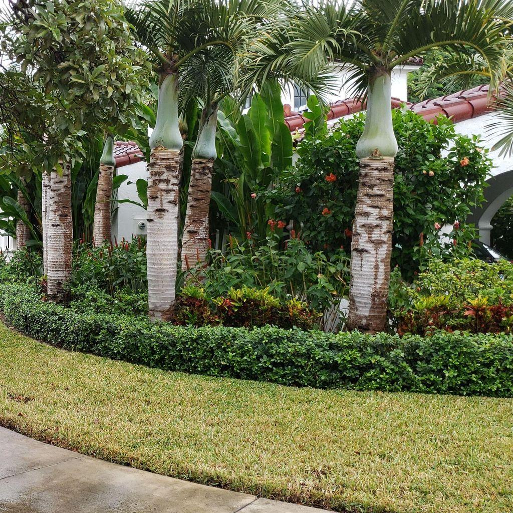 Camo Way Property Maintenance