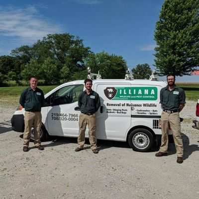 Avatar for Illiana Wildlife and Pest Control Valparaiso, IN Thumbtack