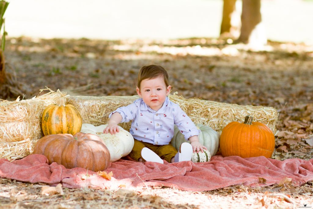 Portrait Photography - Fall 2019 Baby Pictures