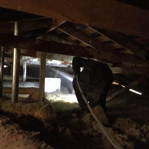 Technician in an attic spraying termite prevention termiticide.