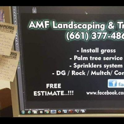 Avatar for AMF Landscaping & Tree Service Perris, CA Thumbtack