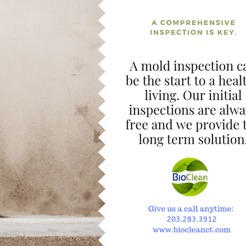 Mold Inspections