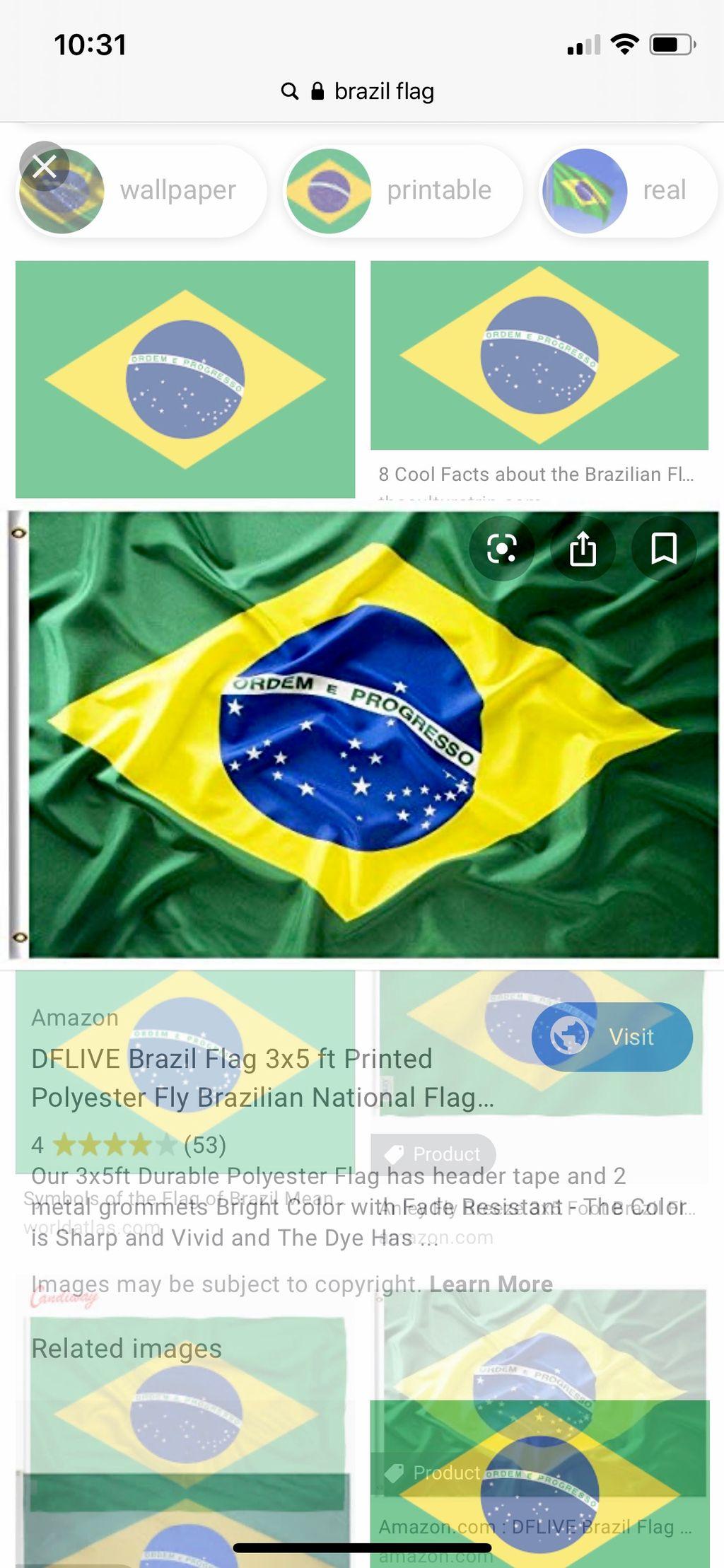 Brazilian Boxing