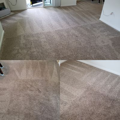 Checkmate Carpet Cleaning Vancouver, WA Thumbtack
