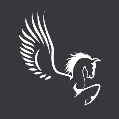 Avatar for Pegasus Aerial Services