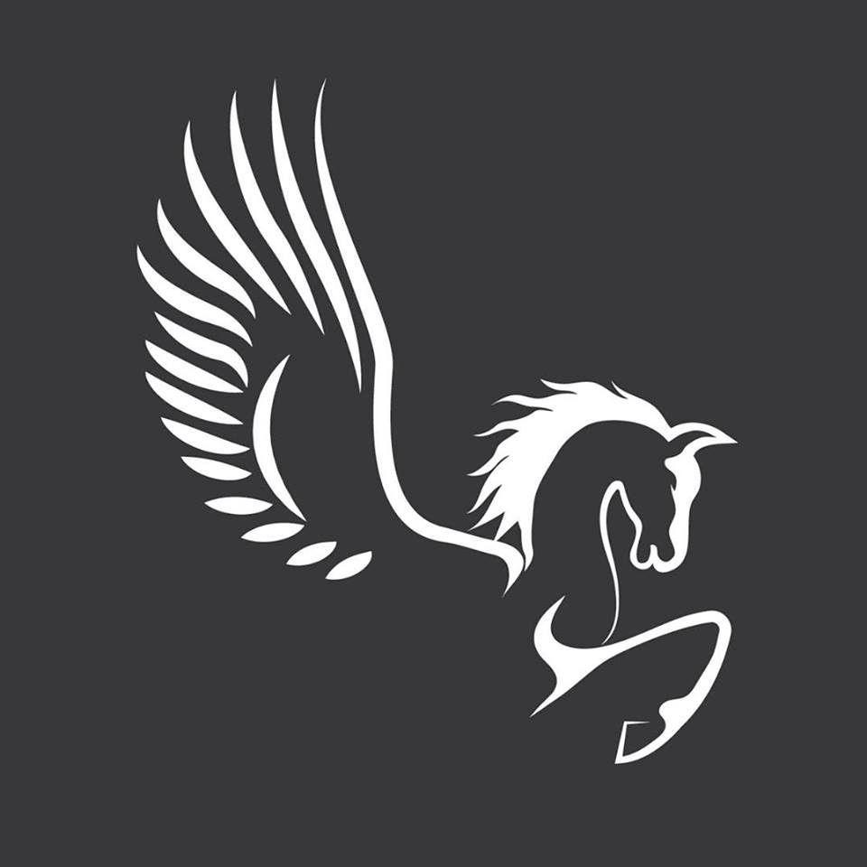 Pegasus Aerial Services