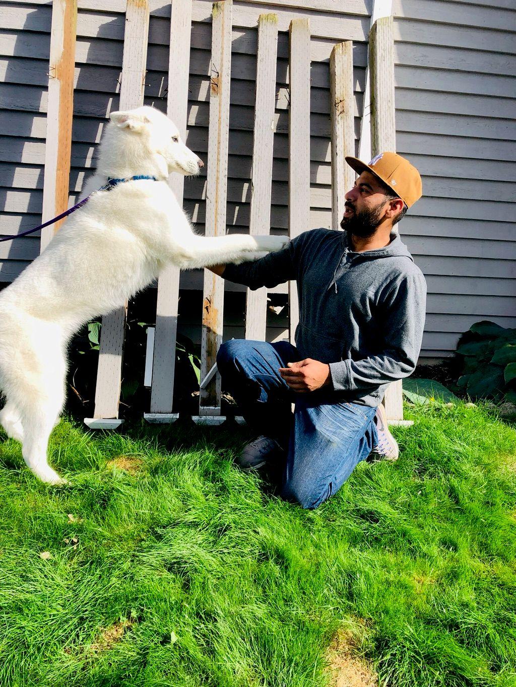 Huskies Remodeling Services