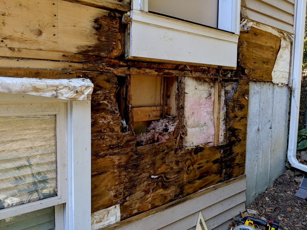 Extensive structural rot under siding and stairs