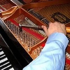 Avatar for Dr Keys Piano Tuning Service Norton, MA Thumbtack