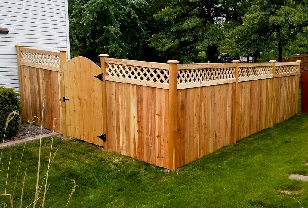 Gorilla Fence