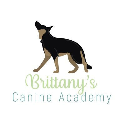 Avatar for Brittany's Canine Academy Whiteland, IN Thumbtack