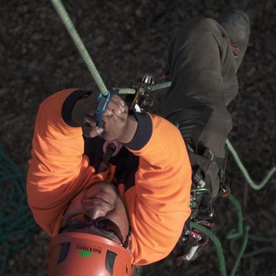Avatar for tree service abx Mount Vernon, NY Thumbtack