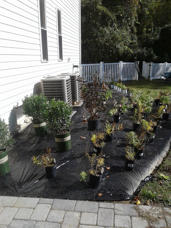 Mulch Garden Creation