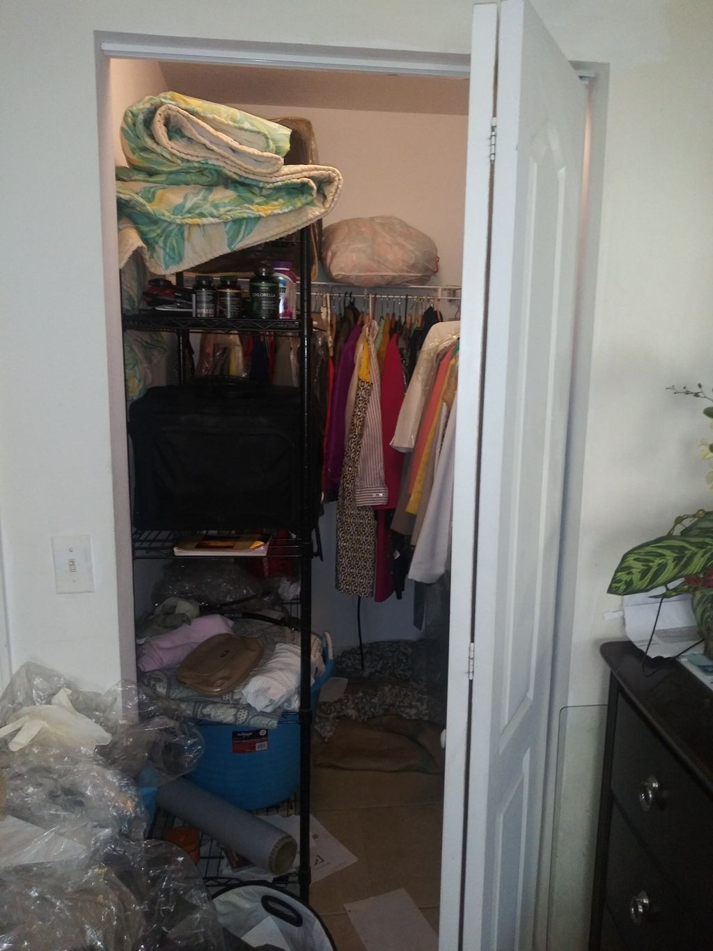 Home Organization and Staging