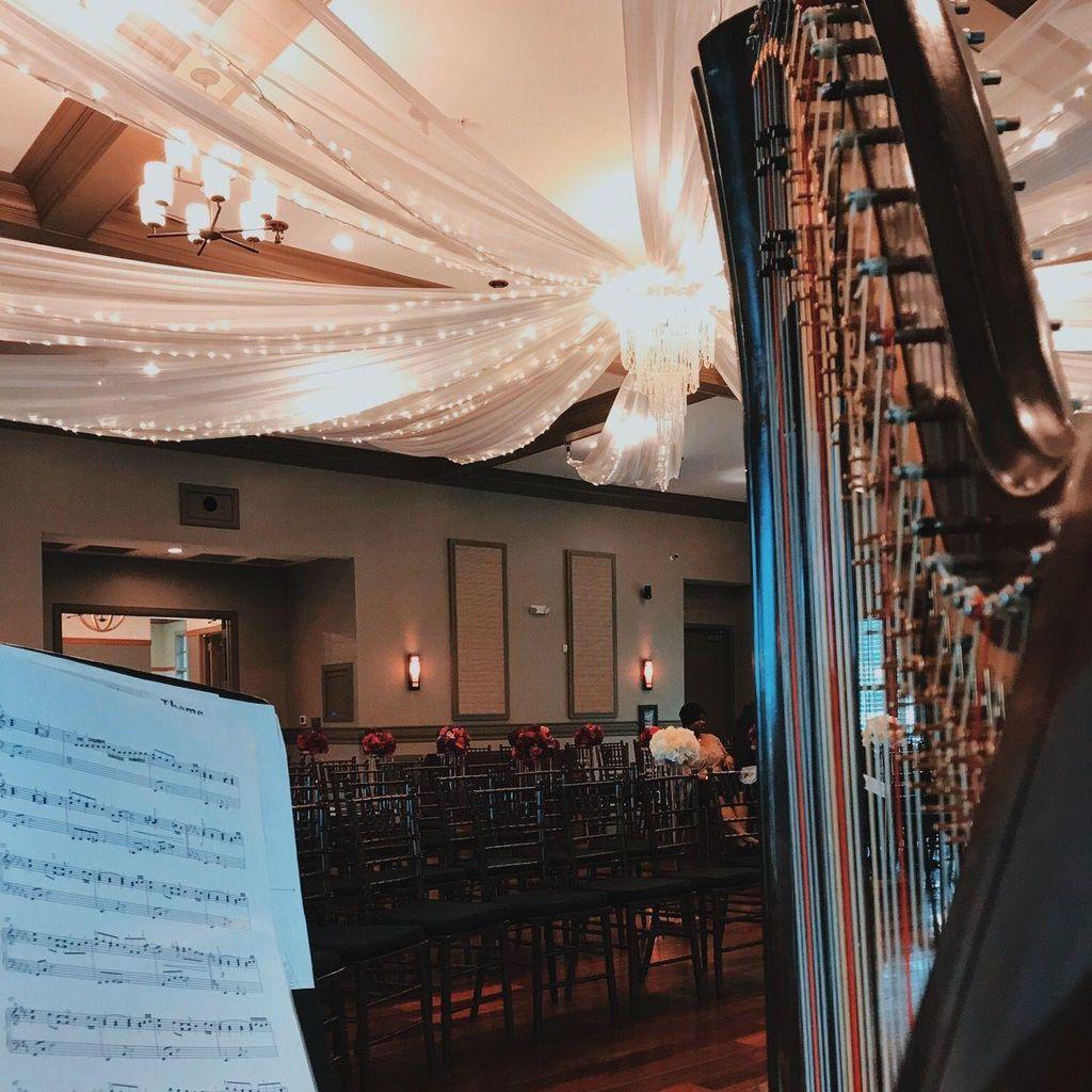 Rhapsody Harpist