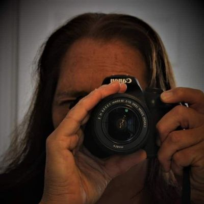 Avatar for Tammy Brewer Photography