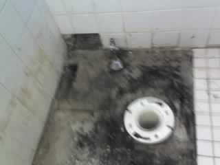 tile repair
