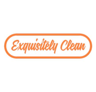 Avatar for Exquisitely Clean Hillsboro, IL Thumbtack