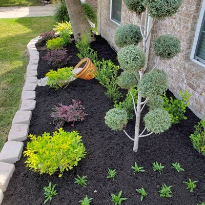 Avatar for Emmanuel's Landscaping & Lawn S. Houston, TX Thumbtack