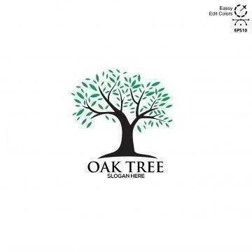 Oaktree Developers Corp.