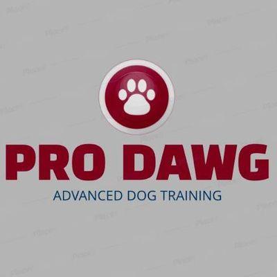 Avatar for Pro Dawg Cincinnati, OH Thumbtack
