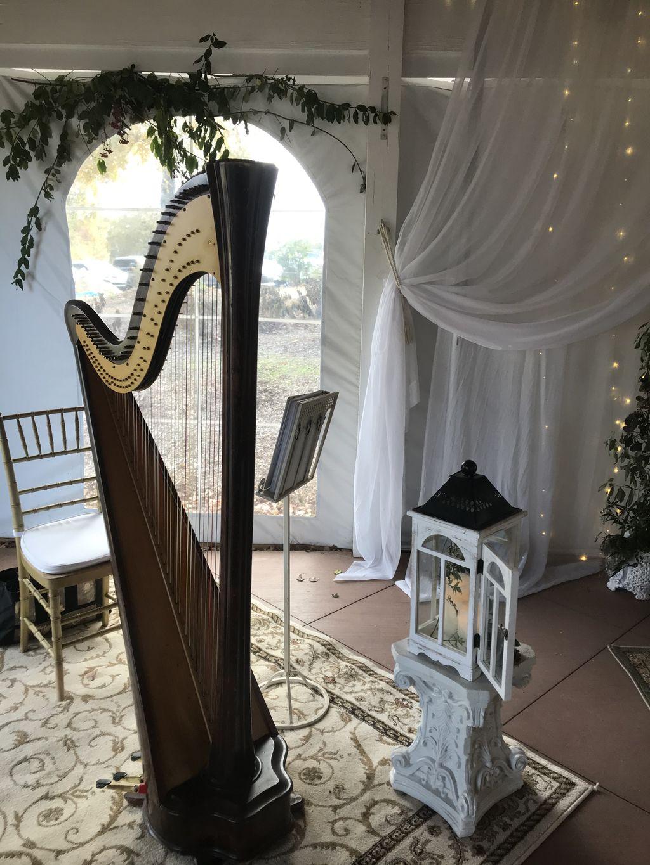 Harleys and Harp Wedding