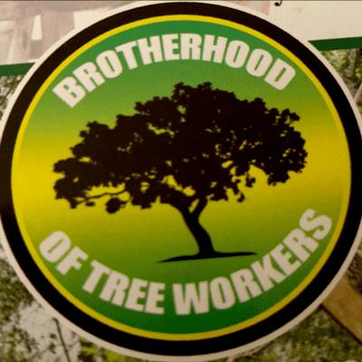Avatar for Brotherhood of tree workers Milwaukee, WI Thumbtack