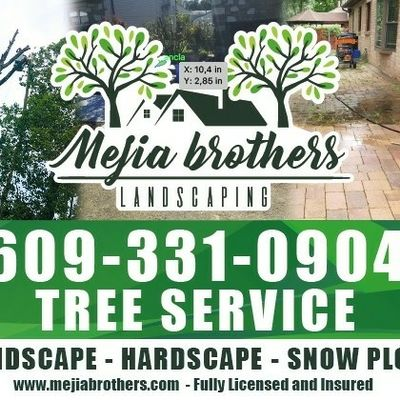 Avatar for The best landscaping