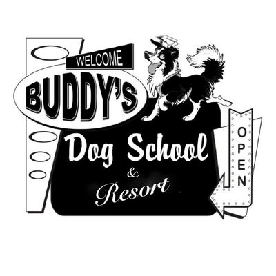 Avatar for Buddy's Dog School, Inc.